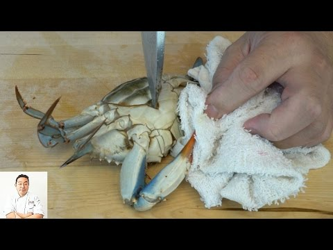 EXTREMELY GRAPHIC Live Kill and Twice Cooked Blue Crabs