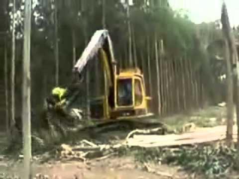 ağaç kesme budama makinası