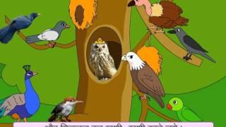 Parrot Takes Chick For A Flight! (Hindi)