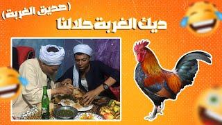 ديك ام الغربه |  ابو التركي الصعيدي
