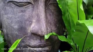 8 HOURS: Asian Meditation Background Music, Mindfulness, Relaxation