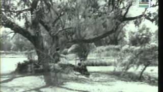 Chinnapatra Part 1 (1972)
