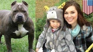 امرأة تقطع أذن كلب بأسنانها لتنقذ رضيعتها