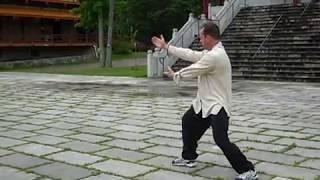 Sifu Robert Dreeben performing Chang style long  Tai Chi Form