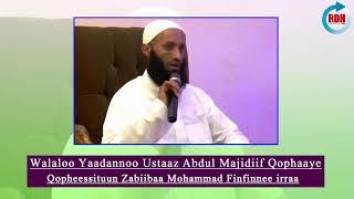 Walaloo Yaadannoo Ustaaz Abdul Majidiif Qophaaye