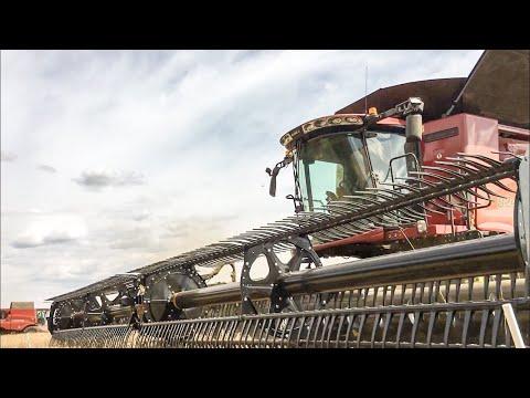 Xxx Mp4 Harvest 2018 ROTE GIGANTEN 3x Case Mähdrescher 6x Case Traktoren Press Technik Krone 3gp Sex