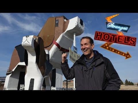 GIANT DOG Strangest Hotels 2 VR180 3D Experience