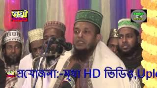 Maulana waliullah asiqi , Sarail Bage Bage Gauchia Darbar Sharif(2016)