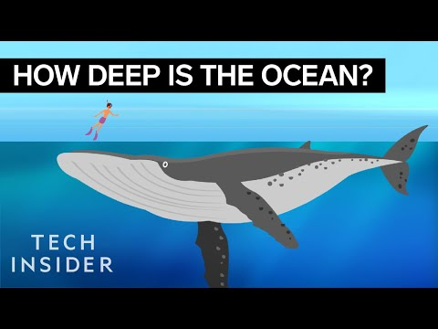 Xxx Mp4 This Incredible Animation Shows How Deep The Ocean Really Is 3gp Sex