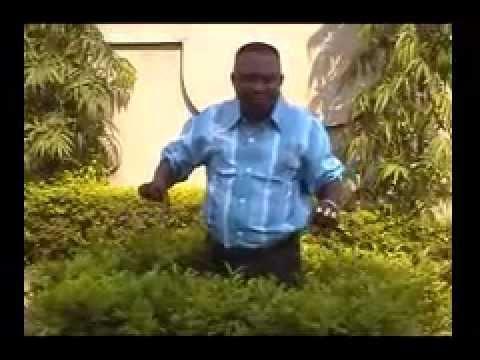 Xxx Mp4 Benin Dokou Djedje Gogohoun Dahoue 3gp Sex