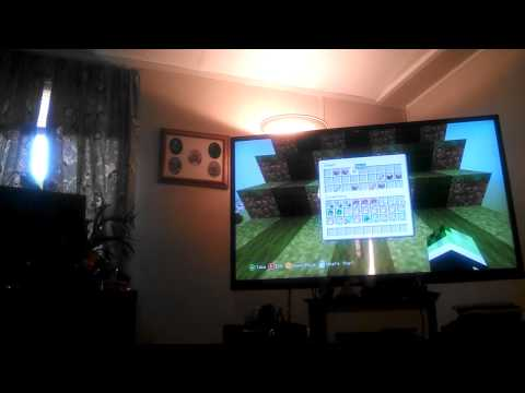 8 year old Minecraft Skyflow Creeper XXX
