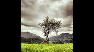 Rohit John Chettri : Bistarai Official Video HD