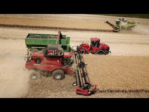 Xxx Mp4 Harvest 2018 3x MacDon Case IH Quadtrac 450 Axial Flow 9120 9230 Lexion 770 Bergmann GTW 430 3gp Sex