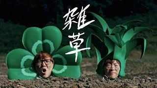 雑草 / ヒカキン&セイキン