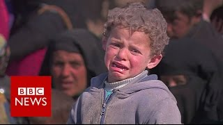 Surviving Mosul: Residents who