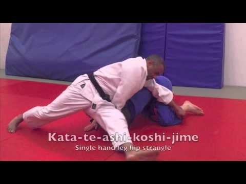 Xxx Mp4 Judo BJA 1st Kyu Brown Belt Requirements 3gp Sex
