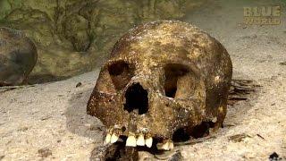Mayan Underworld | JONATHAN BIRD'S BLUE WORLD