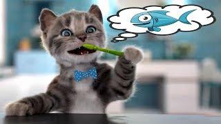 Minik Kedicik Okulda İlk Gün #Çizgifilm Tadında Yeni Oyun