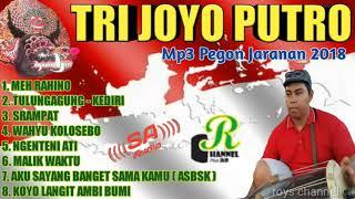 MP3 PEGON JAWI - JARANAN TRI JOYO PUTRO