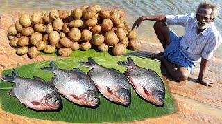 UNSEEN !!! Potato FISH Fry Prepared by my Daddy ARUMUGAM / Village food factory