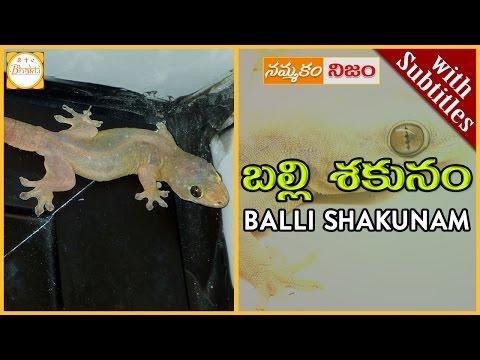 Lizard Science | Balli Shakunam w/subtitles | Superstition or Belief | Nammakam Nijam | Bhakti