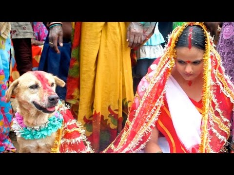 Indian Girl Marries Dog to Ward Off Curse