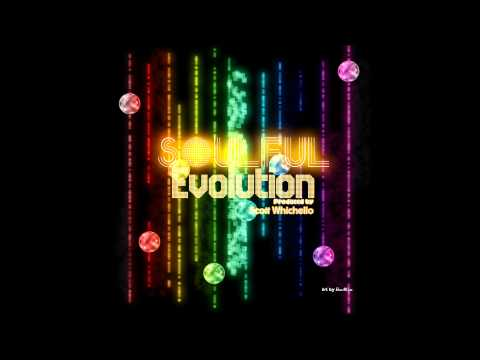 Soulful Evolution March 2nd 2012 HD Weekly Soulful House Show 6