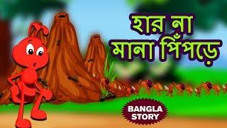 হার না মানা পিঁপড়ে - Rupkothar Golpo | Bangla Cartoon | Bengali Fairy Tales | Koo Koo TV Bengali