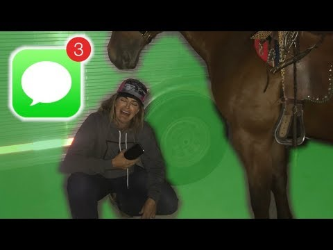 MY HORSE SENT ME A TEXT MESSAGE (not clickbait!)
