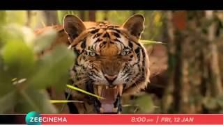 Mohanlal | Jagapati Babu | Sher Ka Shikaar - Friday, 12th Jan, 8 PM