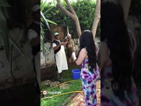 Xxx Mp4 Arab Wife 3gp Sex