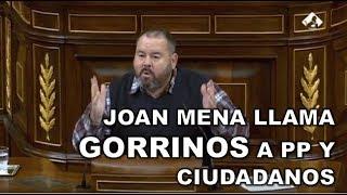 ¡¡POLÉMICA EN EL CONGRESO!! JOAN MENA (Podemos) llama GORRINOS a PP y CIUDADANOS
