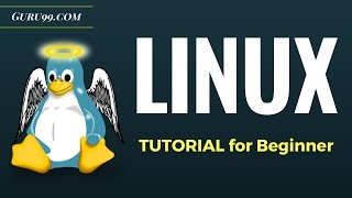 Linux Tutorial for Beginners