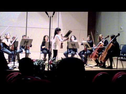 Concierto para violín y orquesta en sol mayor, de Georg Philipp Telemann