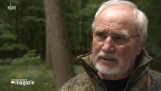 Tierschutz: Nachwuchsjäger Werden Zum Problem NDR Schleswig Holstein Magazin