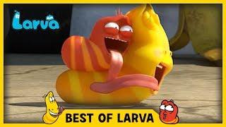 LARVA | BEST OF LARVA | Funny Cartoons for Kids | Cartoons For Children | LARVA 2017 WEEK 23