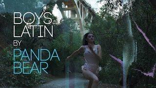 Panda Bear - Boys Latin (Live Version - Unofficial Music Video)
