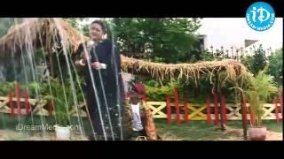 Mallu Aunty Shakeela Showing Her Huge Cleavage to Milk Boy