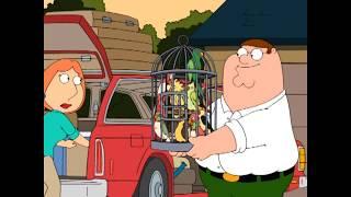 Family Guy - Persian Radio