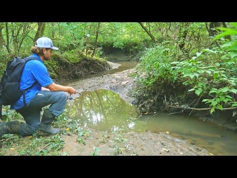 Fishing in a TINY CREEK