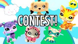 LPS - CONTEST TO GET FEATURED (OPEN NOW! SUBMIT BY 11/31/2017)