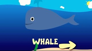 Ocean animals | Sea life | Educational game | Video for kids