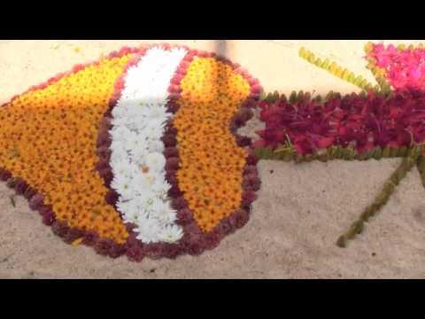 De Jacona a las Fiestas Patronales de Patamban 31 de Octubre 2010