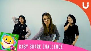 BABY SHARK CHALLENGE PIJARU