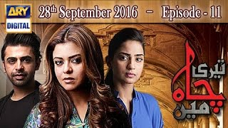 Teri Chah Mein Ep 11 - 28th September 2016  - ARY Digital Drama
