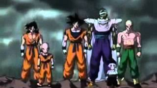 Dragonball Z -Cha la Head Cha La- (Full german OP)
