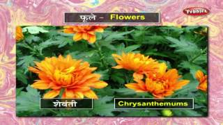 Learn Flowers in Marathi | मराठी शिकूया | Learn Marathi Through English | Learn Marathi Grammar