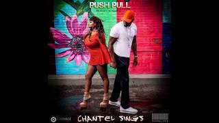 PUSH PULL By Chantel SinGs Produced By Shane G