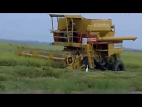 Mesin Padi TR 85 Di Seberang Perak