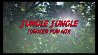 Jungle Jungle | Summer Fun Mix | Arnab Chakraborty | Cover Song